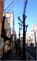 160110123544450_photo