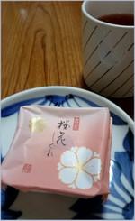 160320172827257_photo