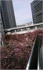 160329144705311_photo