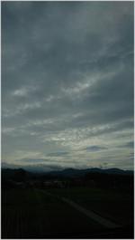 161008092552085_photo