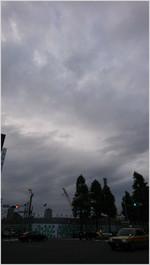 161013162915313_photo