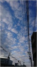 161130075722049_photo