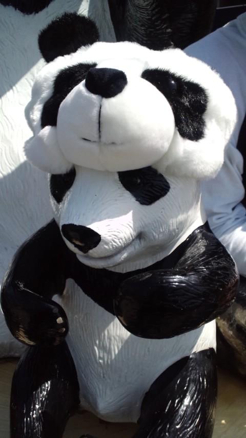 【日常】生パンダを観に